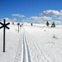piste-ski-de-fond-4